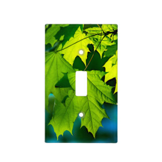 Fresh green maple leaves light switch cover