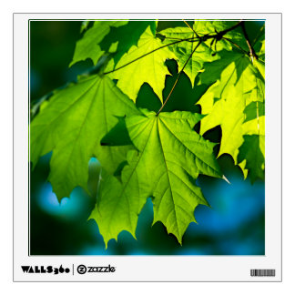 Fresh green maple leaves wall decal