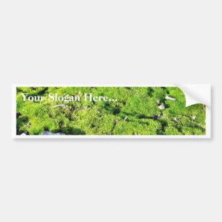 Fresh Green Moss With Some Stones Around. Car Bumper Sticker