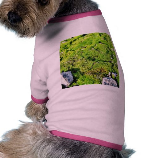 Fresh Green Moss With Some Stones Around. Pet T-shirt