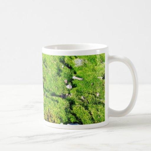 Fresh Green Moss With Some Stones Around. Mug