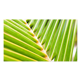 Fresh green palm tree leaves Double-Sided standard business cards (Pack of 100)