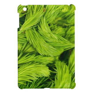 Fresh green sprouts of spruce trees case for the iPad mini