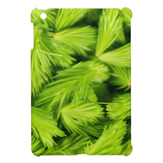 Fresh green sprouts of spruce trees iPad mini covers