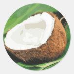 Fresh Hawaiian Coconuts Sticker