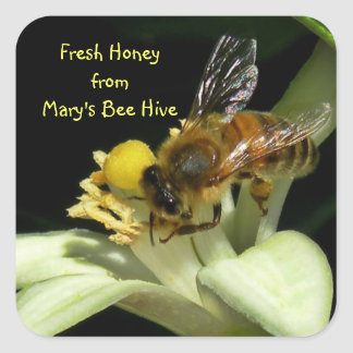 Fresh Honey Bee Hive Square Labels
