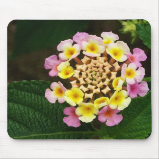 Fresh Lantana Flower Against Leaf Background Mouse Pad