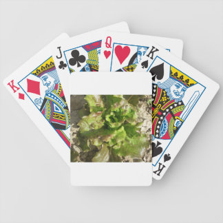 Fresh lettuce growing in the field. Tuscany, Italy Bicycle Playing Cards
