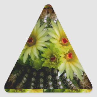 FRESH look CACTUS CACTI Flower Show: Greetings Triangle Sticker