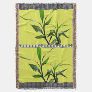 Fresh lucky bamboo green leaves in green throw blanket