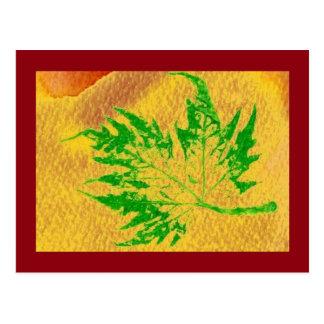 """""""Fresh Maple Leaf #4"""" Country Roads Postcard"""