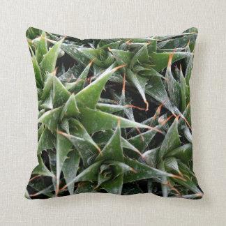 Fresh Mood Throw Cushion