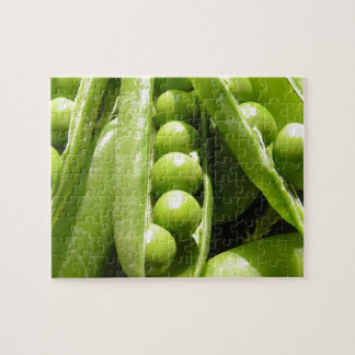 Fresh open green pea pods in sunlight jigsaw puzzle
