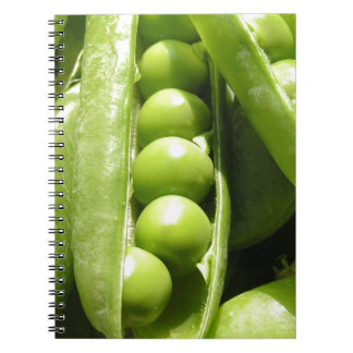 Fresh open green pea pods in sunlight notebook