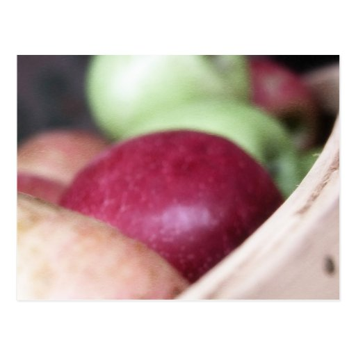 Fresh Organic Apples Postcard