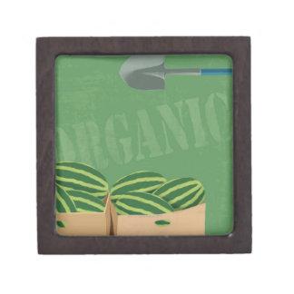 Fresh Organic Melons Jewelry Box
