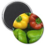 Fresh Peppers II (13 x 13) Refrigerator Magnet
