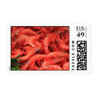 Fresh Prawns Postage Stamp