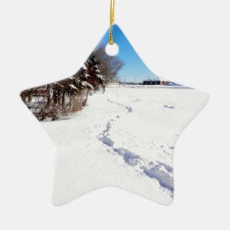 Fresh Print On Kent's Pond Ceramic Ornament