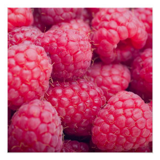 Fresh raspberries poster