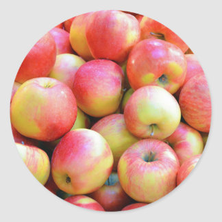 Fresh red and yellow apples classic round sticker