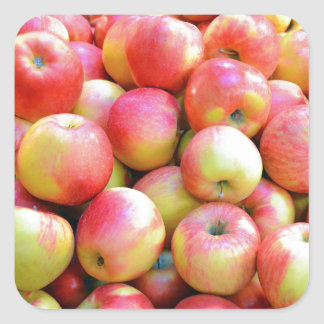 Fresh red and yellow apples square sticker