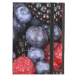 Fresh Red Blue and Purple Berries iPad Case