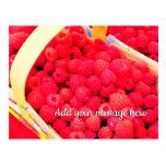 Fresh Red Raspberries Berry Baskets in a Market Postcard