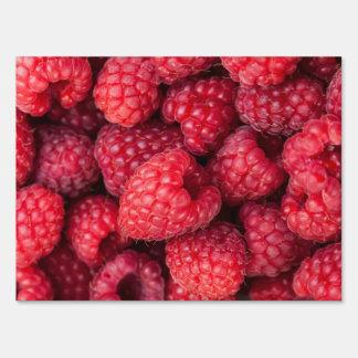 Fresh red raspberries yard sign