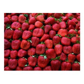 Fresh Red Strawberries Postcard