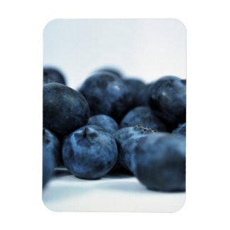 Fresh Ripe Blueberries Magnet