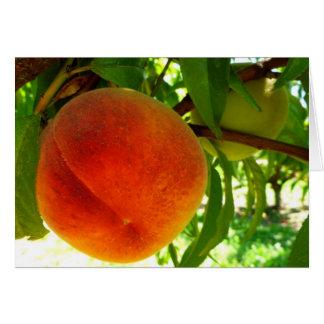 Fresh Ripe Peach Card