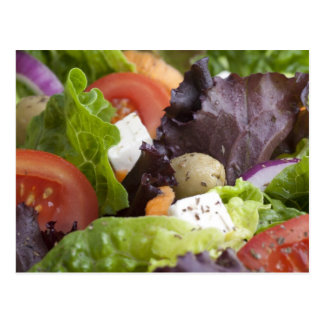 Fresh Salad Postcard
