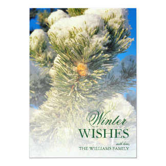 Fresh snow on Pine Needles Card