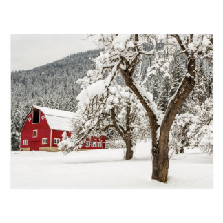 Fresh snow on red barn postcard