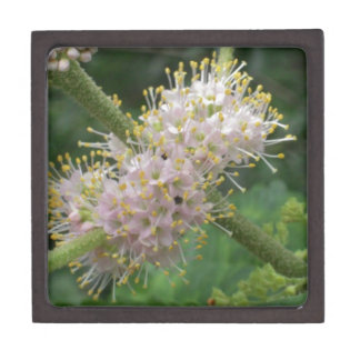 Fresh Spring Flower Photo Premium Trinket Boxes