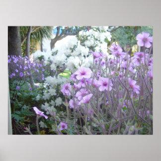 Fresh Spring Flowers Poster