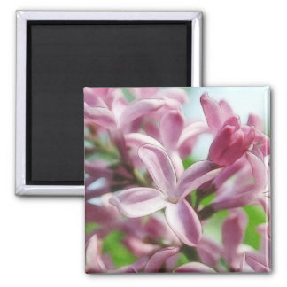 Fresh Spring Lilacs 2 Inch Square Magnet