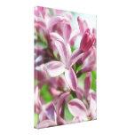 Fresh Spring Lilacs Gallery Wrap Canvas