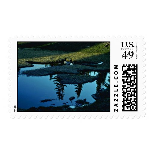 Fresh Spring Postage Stamps