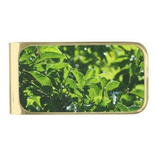 fresh spring, summer green leaves money clip. gold finish money clip