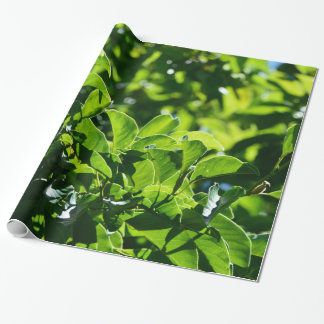 fresh spring, summer green leaves. Nature floral Wrapping Paper