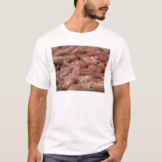 Fresh Squid Adult Tee Shirt