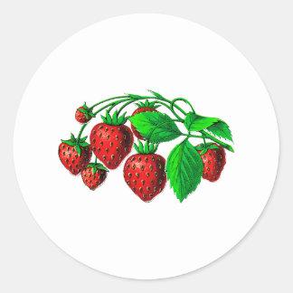 Fresh Strawberries Classic Round Sticker