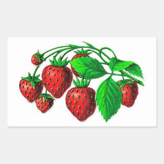 Fresh Strawberries Rectangular Sticker