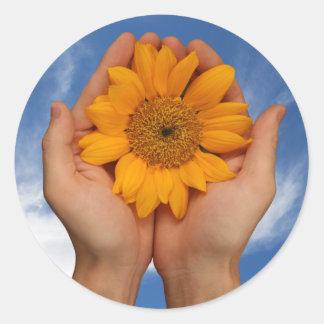 fresh, sunny, earthy sunflower image classic round sticker