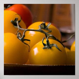 Fresh Tomato's Poster