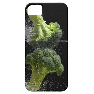 fresh vegetables & food hygiene iPhone SE/5/5s case