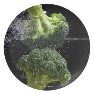 fresh vegetables & food hygiene dinner plate