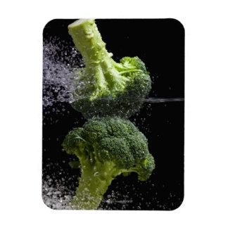 fresh vegetables & food hygiene rectangular photo magnet